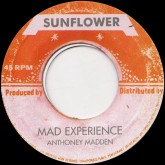 anthony-madden-mad-experience-sunflower-cover