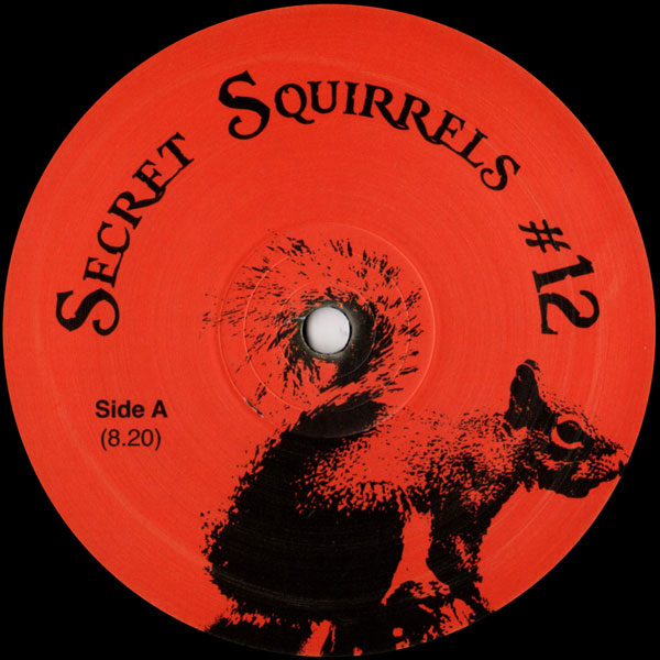 secret-squirrels-secret-squirrels-12-secret-squirrels-cover