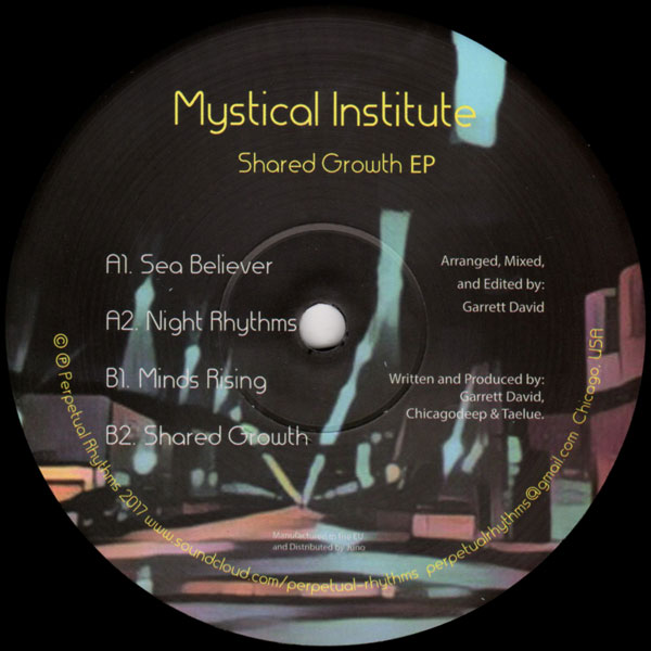 mystical-institute-garrett-shared-growth-ep-perpetual-rhythms-cover