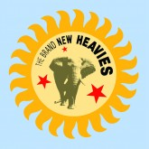 the-brand-new-heavies-the-brand-new-heavies-lp-acid-jazz-cover