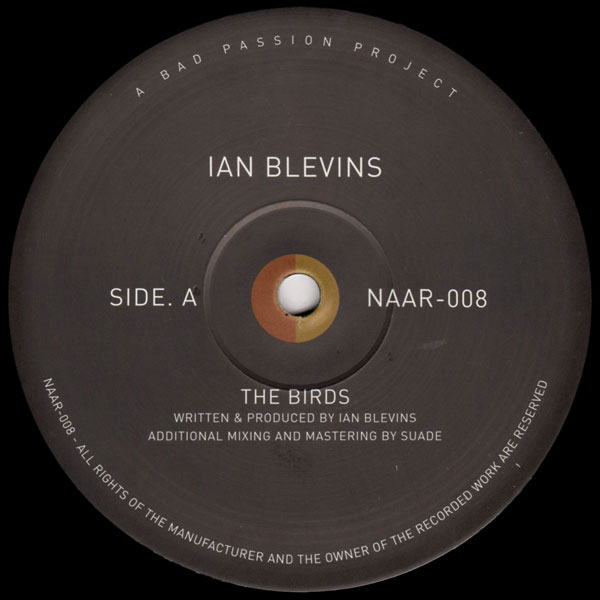 ian-blevins-the-birds-not-an-animal-records-cover