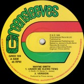 wayne-smith-michael-buck-under-me-sleng-teng-dance-greensleeves-records-cover