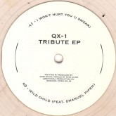 qx-1-mike-dunn-tribute-ep-i-wont-hurt-you-i-pd-recordings-cover