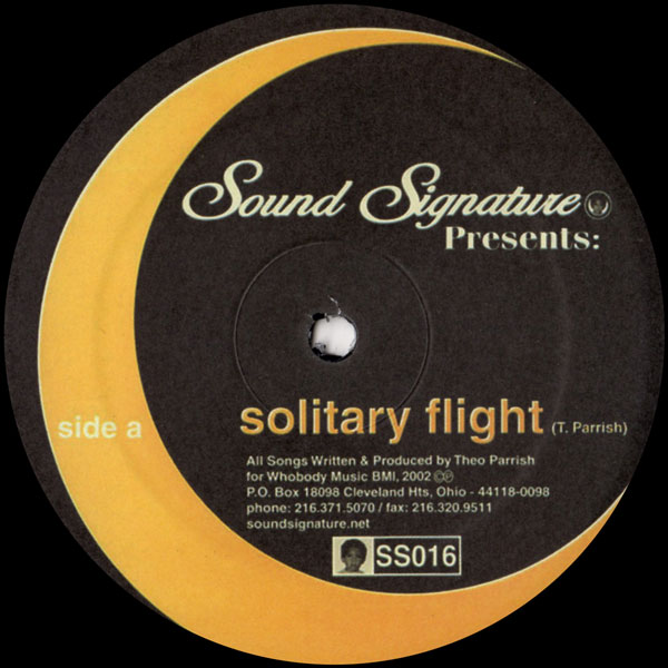 theo-parrish-solitary-flight-dellwood-sound-signature-cover
