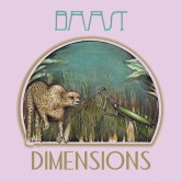 baast-dimensions-lp-ubiquity-cover