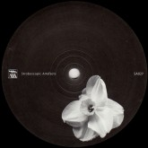 kangding-ray-rrose-ardent-swallows-stroboscopic-artefacts-cover