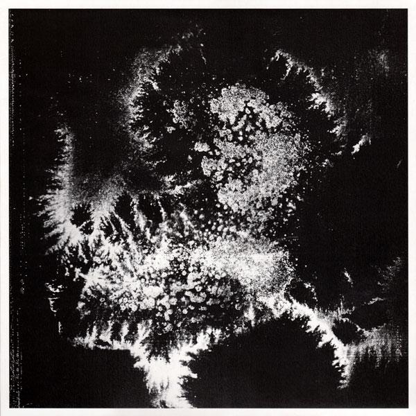 vera-dvale-psykovarius-udu-sex-tags-amfibia-cover
