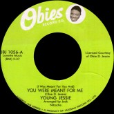 young-jessie-you-were-meant-for-me-mary-juke-box-jam-cover