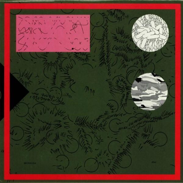 broshuda-jemi-lp-haunter-records-cover