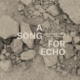 ricardo-donoso-a-song-for-echo-lp-kathexis-cover