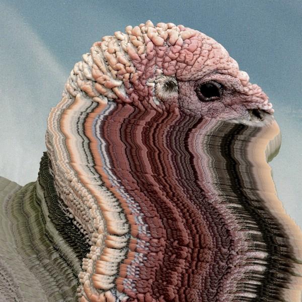 holy-fck-bird-brains-innovative-leisure-cover