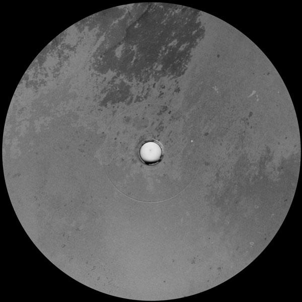 yoshinori-hayashi-asylum-lovers-rock-cover