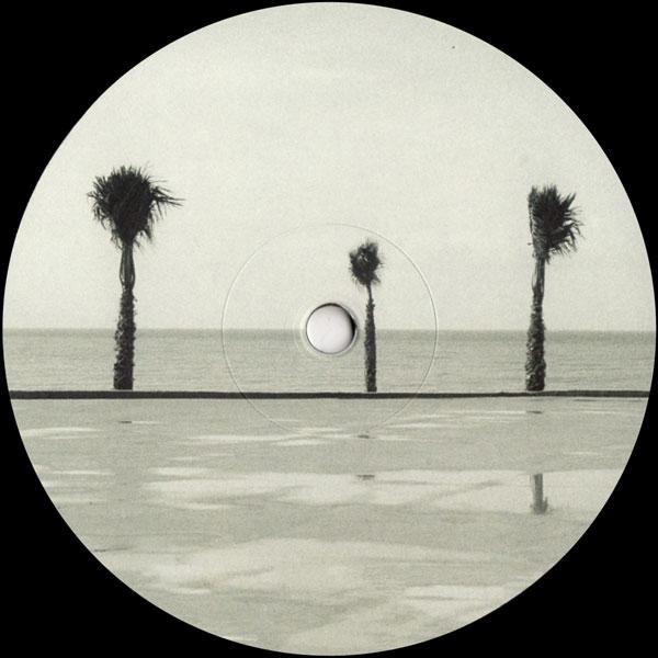 various-artists-dream-raw-recordings-various-dream-raw-recordings-cover