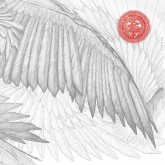 the-bug-angels-devils-lp-ninja-tune-cover