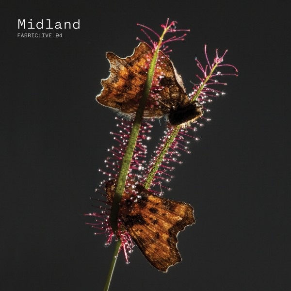midland-fabric-live-94-cd-fabric-cover