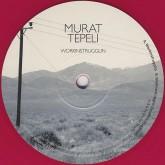 murat-tepeli-workinstrugglin-soulphiction-philpot-cover
