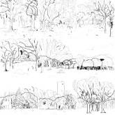 lawrence-yoyogi-park-lp-mule-musiq-cover