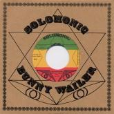 peter-tosh-anti-apartheid-solidarity-solomonic-cover