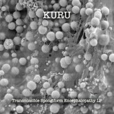 kuru-aka-dj-spider-transmissible-spongiform-encepha-sublevel-sounds-cover