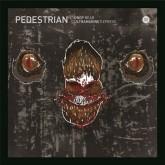 pedestrian-drop-bear-ultramarine-express-born-electric-cover