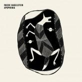 ruede-hagelstein-apophenia-cd-watergate-cover
