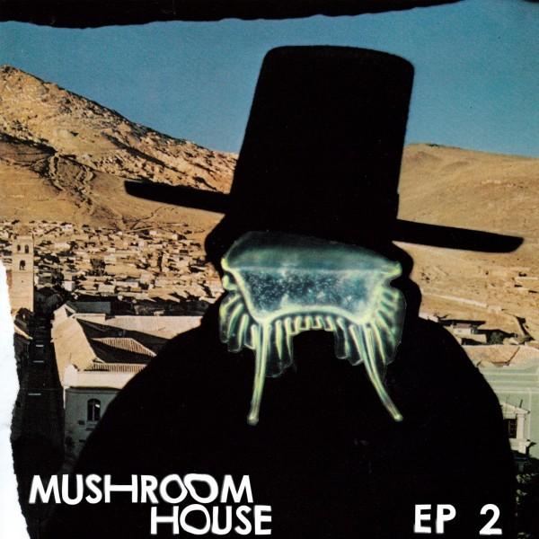 auntie-flo-munk-various-mushroom-house-ep-2-toytonics-cover