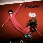 pollyester-earthly-powers-lp-permanent-vacation-cover