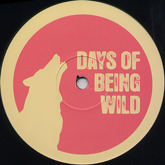 franz-kirmann-spinner-dolibox-remain-remix-days-of-being-wild-cover
