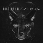 disclosure-caracal-cd-pmr-records-cover