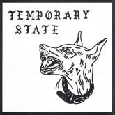 peakshift-detensing-ep-temporary-state-cover