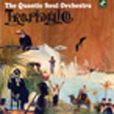 quantic-soul-orchestra-tropidelico-cd-tru-thoughts-cover