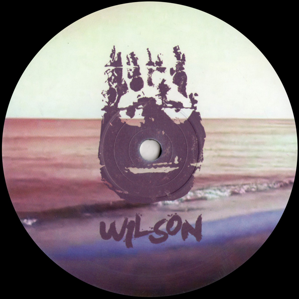 fabio-monesi-wishing-on-the-stars-wilson-records-cover