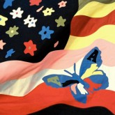 the-avalanches-wildflower-lp-limited-editi-xl-recordings-cover