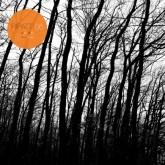 heisenberg-vladislav-delay-ripatti-06-ripatti-cover
