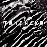 tensnake-keep-on-talking-true-romance-cover