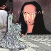 torn-hawk-we-burnt-time-valcrond-video-cover