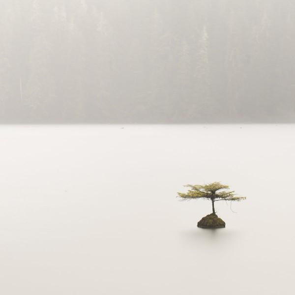mystica-tribe-island-oasis-silent-season-cover