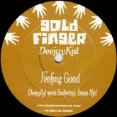 deejaykul-feeling-good-gold-finger-cover
