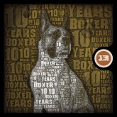 various-artists-10-years-of-boxer-sport-cd-boxer-sport-cover