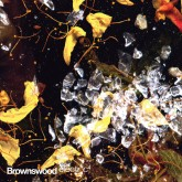 various-artists-brownswood-electric-4-cd-brownswood-recordings-cover