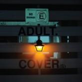 adult-shari-vari-7inch-ghostly-international-cover