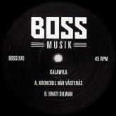 kalawila-krokodil-nar-vasteras-boss-musik-cover