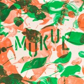 mukul-still-current-rysunku-cover