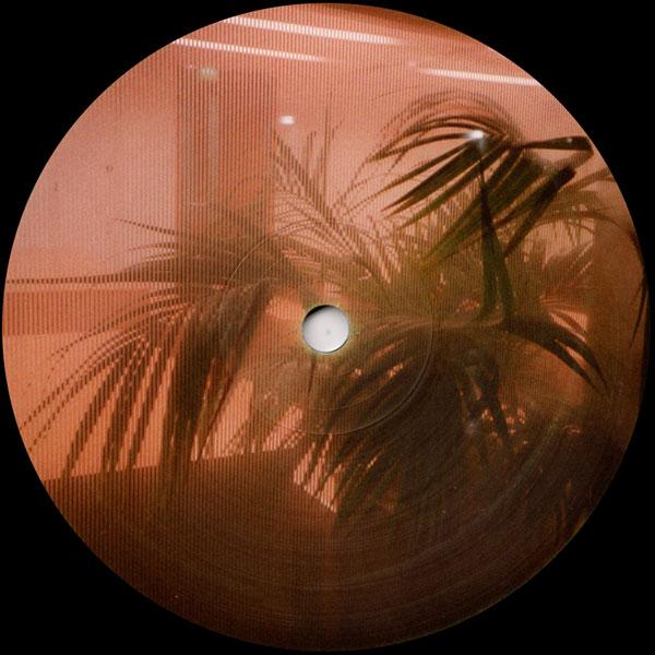 garrett-david-octagon-blues-distant-hawaii-cover