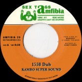 kambo-super-sound-don-p-1538-dub-rebel-danc-sex-tags-amfibia-cover