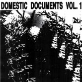 various-artists-domestic-documents-vol-1-butter-sessions-noise-in-my-cover