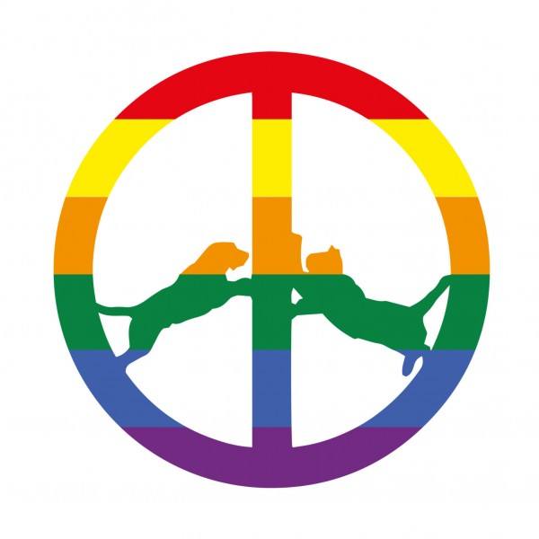 hype-williams-rainbow-edition-lp-big-dada-cover