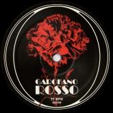 garofano-rosso-garofano-rosso-giallo-disco-cover