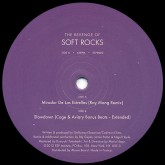 soft-rocks-mirador-de-las-estrellas-ray-esp-institute-cover