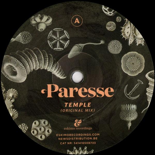 paresse-temple-simple-symmetry-rem-eskimo-recordings-cover